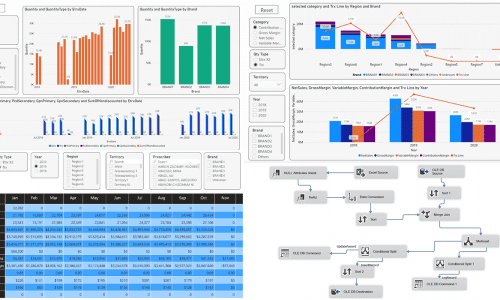 Sales & Budget Analytics For a US Pharmaceutical Company